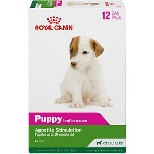Royal Canin Puppy Appetite Stimulation Canned Dog Food