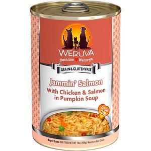 Weruva Jammin' Salmon with Chicken & Salmon in Pumpkin Soup Grain-Free Canned Dog Food