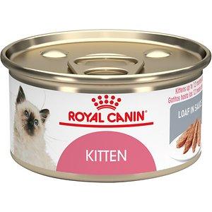 Royal Canin Feline Health Nutrition Loaf in Sauce Canned Kitten Food