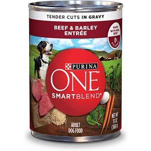 Purina ONE SmartBlend Tender Cuts in Gravy Beef & Barley Entree Adult Canned Dog Food