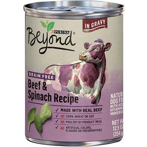 Purina Beyond Beef & Spinach Recipe in Gravy Grain-Free Canned Dog Food