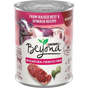Purina Beyond Farm-Raised Beef & Spinach in Gravy Recipe Grain-Free Canned Dog Food